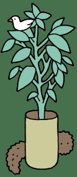 トリと植物